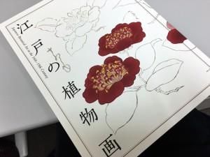 江戸の植物画